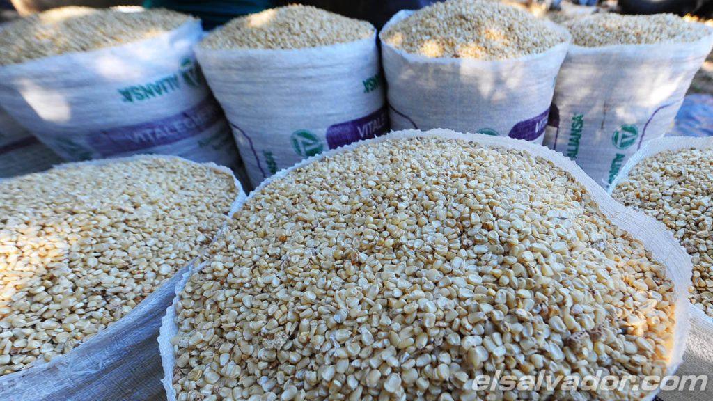Agricultores no negociaron mejor precio del maíz y culpan al Gobierno