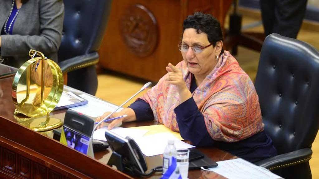 Lorena Peña del FMLN quiere despenalizar el aborto en esta legislatura