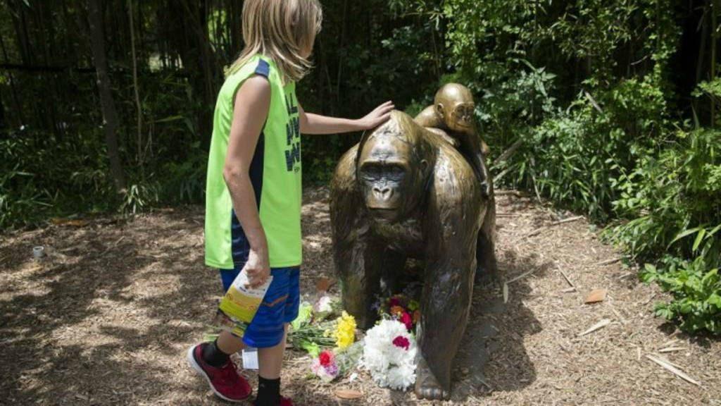 Buscan castigar a los padres del niño que cayó en la jaula de un gorila en EU