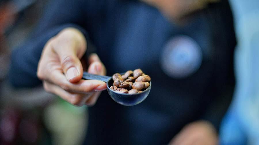 Ministro de Agricultura llega a la Asamblea a pedir préstamo para producción de café