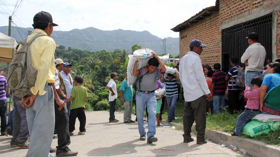Agricultores urgen 128 mil paquetes agrícolas