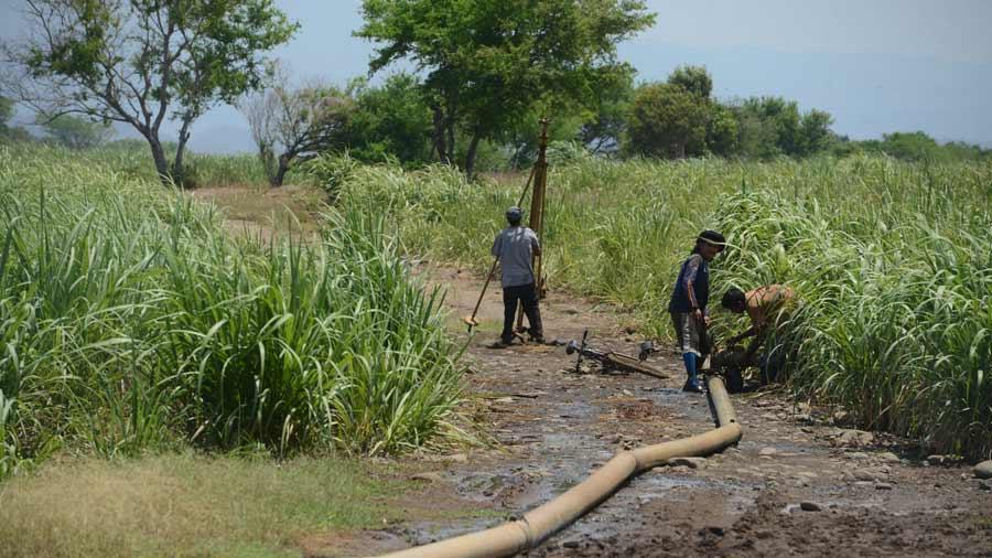 El país necesita fomentar riego por goteo y por aspersión